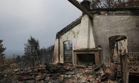 Φωτιές: Όλα τα μέτρα στήριξης για τους πυρόπληκτους - Τι προβλέπεται για τις αναδασώσεις