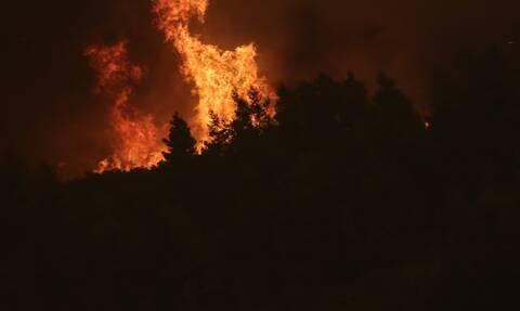 Συναγερμός στην Πυροσβεστική: Φωτιά στις Αφίδνες - Τέθηκε υπό έλεγχο