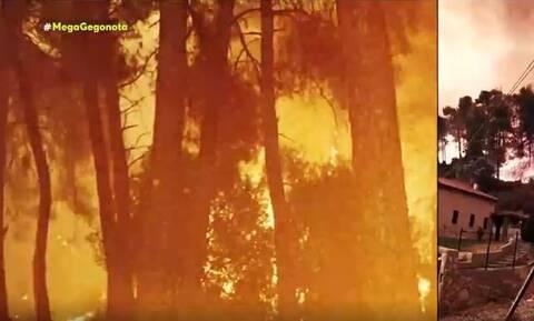 «Θεέ μου σε παρακαλώ…»: Συγκλονιστικά βίντεο από τις φωτιές σε Ροβιές και Γούβες