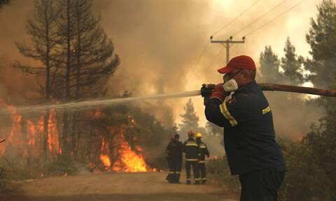 Φωτιά - Εύβοια: Καίει ανεξέλεγκτα στα Μεσοχώρια - Εικόνες και βίντεο από την περιοχή
