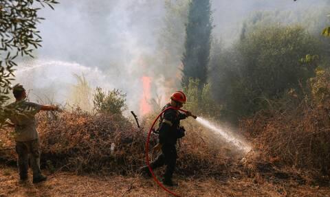 Πύρινα μέτωπα σε Εύβοια και Αρχαία Κόρινθο - Μήνυμα του 112 για εκκένωση οικισμού