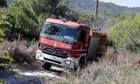 Φωτιά ΤΩΡΑ: Υπό έλεγχο τα πύρινα μέτωπα σε Καστοριά και Κέρκυρα