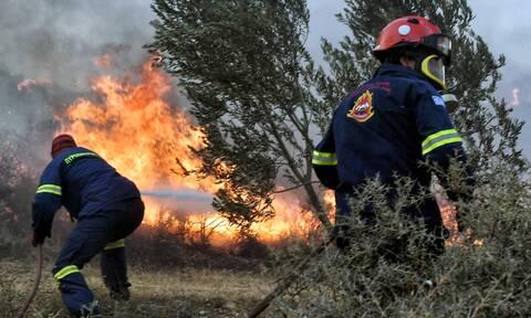 Πολύ υψηλός κίνδυνος φωτιάς σήμερα: Άνεμοι έως 7 μποφόρ - «Πορτοκαλί» συναγερμός για έξι Περιφέρειες