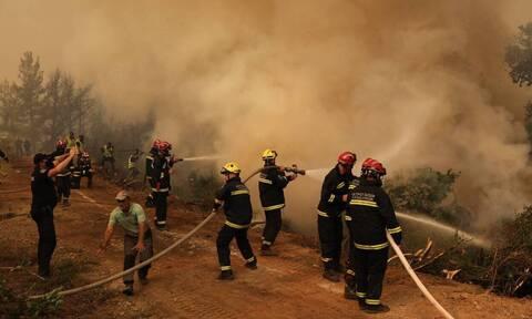 Φωτιά στη Νότια Εύβοια: Ο καπνός ταξίδεψε προς την Αθήνα με 60 χιλιόμετρα