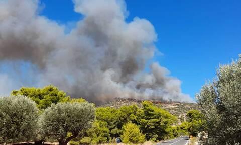 Δήμαρχος Λαυρεωτικής στο Newsbomb.gr: Η φωτιά ξεκίνησε από εμπρησμό