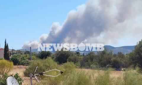 Δήμαρχος Σαρωνικού στο Newsbomb.gr για φωτιά Κερατέα: Πρόβλημα αν φτάσει στον Εθνικό Δρυμό Σουνίου