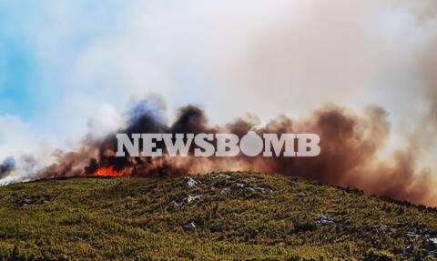Φωτιά στην Κερατέα: Εκκενώνεται ο οικισμός Συντερίνα – Μήνυμα από το 112