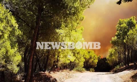 Φωτιά στην Κερατέα: To Newsbomb.gr στο μέτωπο της πυρκαγιάς