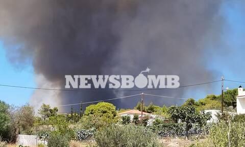 Φωτιά στην Κερατέα: Μεγάλο και ενιαίο το μέτωπο - Μάχη για να μην καεί ο Εθνικός Δρυμός του Σουνίου