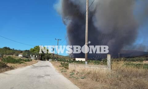 Φωτιές: Με ένταση θα πνέουν οι άνεμοι τις επόμενες ώρες - Δύσκολο το έργο των πυροσβεστών