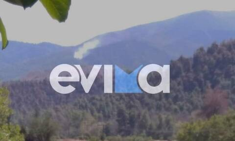 Φωτιά ΤΩΡΑ στην Εύβοια: Αναζωπύρωση στο Τρούπι -  Στο σημείο ισχυρές δυνάμεις της Πυροσβεστικής