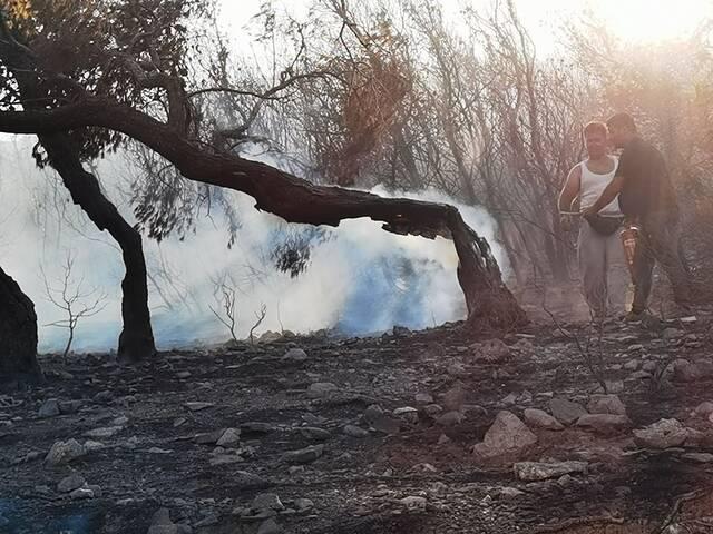 Εικόνες από την μεγάλη πυρκαγιά στην Κερατέα