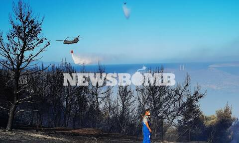 Φωτιά Βίλια: Μάχη για να μην φτάσει σε οικισμούς - Στο Όρος Πατέρα έφτασαν οι φλόγες