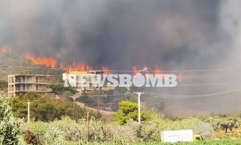Φωτιά στην Κερατέα: Ψάχνουν τους εμπρηστές της Λαυρεωτικής