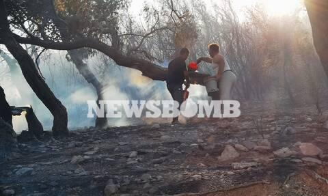 Πατούλης: Μεγάλη οικολογική καταστροφή από τη φωτιά στα Βίλια