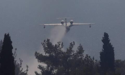 Πυροσβεστική: Ισχυρές δυνάμεις επιχειρούν στις φωτιές σε Βίλια και Κερατέα – Στη μάχη και το Beriev