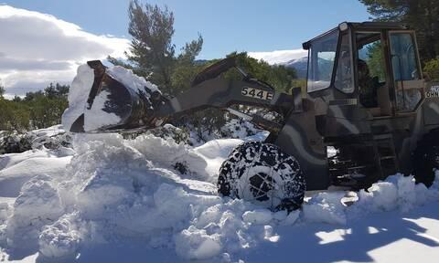 Αρναούτογλου: Η πρώτη εκτίμηση για τον χειμώνα, πόσο θα χιονίσει