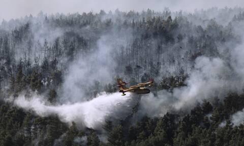 Φωτιά στα Βίλια: Ο καπνός έφτασε μέχρι την Κρήτη – Οι άνεμοι των επόμενων ωρών στην περιοχή