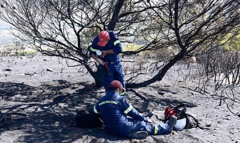 Δήμαρχος Λαυρεωτικής: Δεν υπήρξαν σημαντικές ζημιές σε σπίτια από τη φωτιά στην Κερατέα
