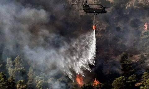Φωτιά στην Κερατέα: Νέα μεγάλη αναζωπύρωση και συναγερμός - Μάχη στα Βίλια, καταγγελίες εμπρησμών
