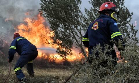Φωτιά στα Βίλια: «Είναι εμπρησμός 100%», λέει στο Newsbomb.gr ο δήμαρχος Χρήστος Στάθης
