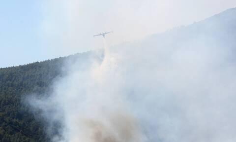 Φωτιά στα Βίλια: Θέμα χρόνου η ΕΔΕ για την παρ' ολίγον αεροπορική τραγωδία με το Ilyushin