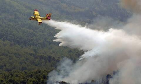 В районе греческого поселка Вилиа уже четвертые сутки продолжается борьба с пожарами