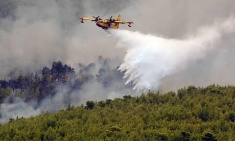 Φωτιά στα Βίλια: Άνιση μάχη σε πολλά μέτωπα - Εκκενώθηκαν δύο οικισμοί