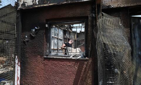 arogi.gov.gr: Η διαδικασία υποβολής αίτησης αποζημίωσης από πυρόπληκτους μέσα από 6 ερωτήσεις