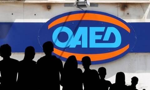ΟΑΕΔ: Έρχεται νέο πρόγραμμα για 10.000 ανέργους - Ποιους αφορά