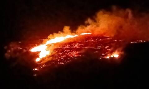 Φωτιά ΤΩΡΑ: Πυρκαγιά στο Δασκαλειό Κερατέας