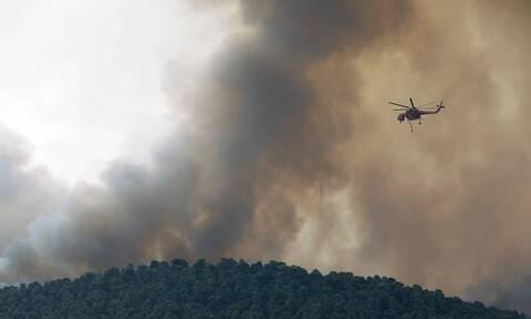 Φωτιά στα Βίλια: Όλες οι δυνάμεις στο νότιο μέτωπο - Ανησυχία για τις αναζωπυρώσεις