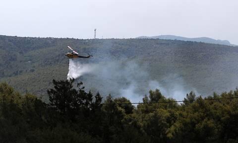 Φωτιά στα Βίλια: Καίει για πέμπτη ημέρα, «μάχη» στο νότιο τμήμα του πύρινου μετώπου