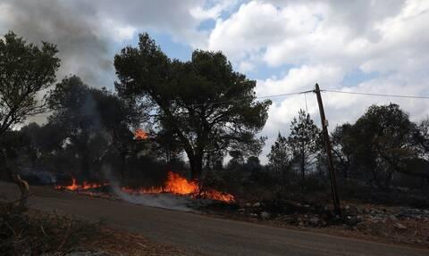 Φωτιά στα Βίλια: «Θα περάσουμε σε ύφεση» λέει ο Γ. Πατούλης – Ανησυχία για τις αναζωπυρώσεις