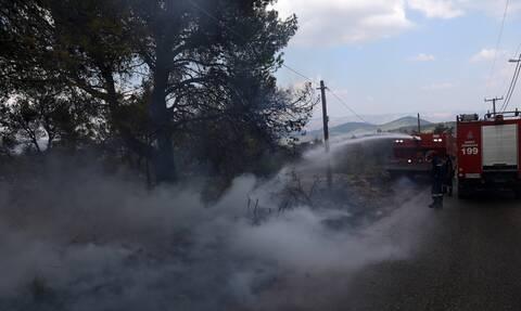 Meteo καιρός κίνδυνος πυρκαγιάς