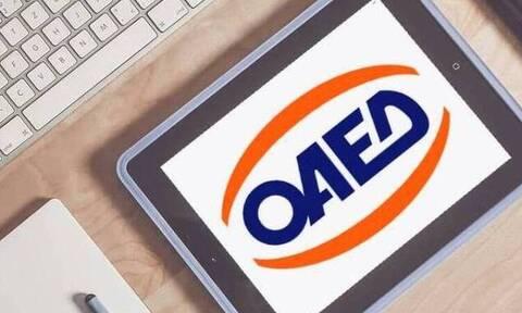 ΟΑΕΔ: Πρόγραμμα επιδότησης της εργασίας για ανέργους 30 ετών και άνω - Τη Δευτέρα οι αιτήσεις