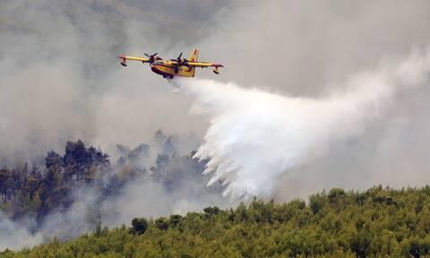 Πολύ υψηλός κίνδυνος πυρκαγιάς για το Σάββατο (21/08) - Ποιες είναι οι «πορτοκαλί» περιοχές
