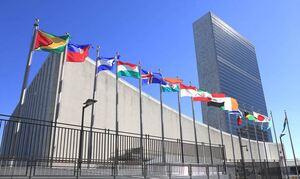 Продовольственная программа ООН приостановила оказание гуманитарной помощи Афганистану