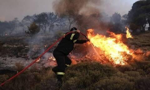 Ιεράπετρα: Υπό έλεγχο η φωτιά κοντά στην Επισκοπή