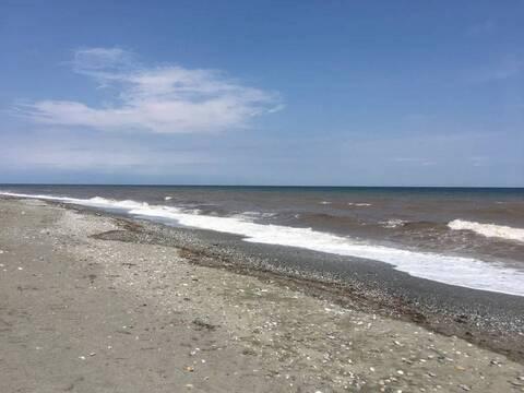 Λάρισα: Γιατί η θάλασσα σε Σωτηρίτσα και Βελίκα «άλλαξε χρώμα» και από μπλε έγινε... καφέ