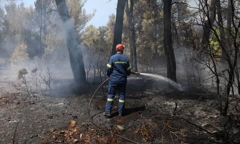 ΣΥΡΙΖΑ: Η κυβέρνηση Μητσοτάκη θέλει να «θάψει» την ΕΔΕ για τους πυροσβέστες που είπαν την αλήθεια