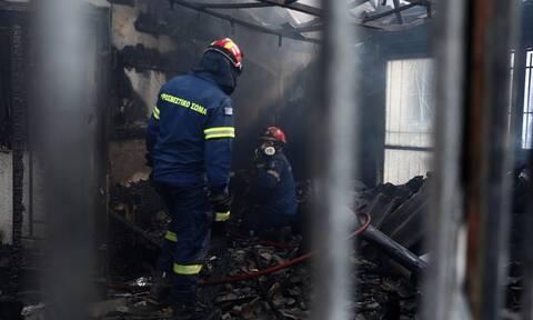 Δασικές πυρκαγιές στην Ελλάδα: Ποιος «συντονίζει» αυτό τον τόπο;