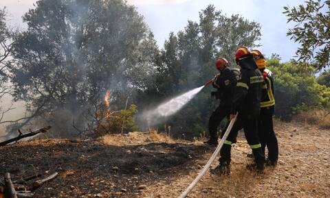 Κόκκινος συναγερμός: Ακραίος κίνδυνος πυρκαγιάς σήμερα σε Αττική και Εύβοια