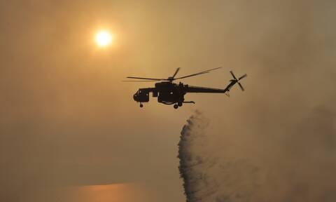 Φωτιά ΤΩΡΑ: Υπό έλεγχο τέθηκε η πυρκαγιά στο Ωραίο Ξάνθης