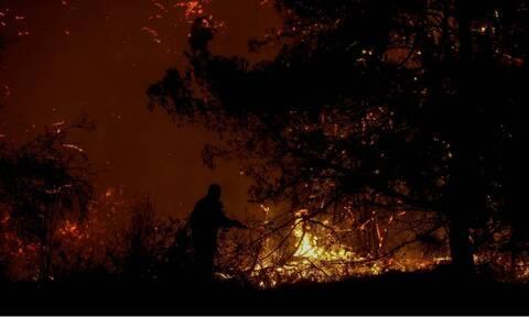 Φωτιά ΤΩΡΑ: Μεγάλη πυρκαγιά στον Φηγιά Καρύστου