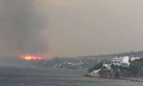 Φωτιά στην Κάρυστο: Το μέτωπο όπως φαίνεται από το πλοίο – Εντυπωσιακό βίντεο