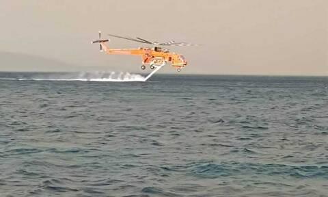 Φωτιά στην Κάρυστο: Σε δύο μέτωπα η μάχη της Πυροσβεστικής - Στόχος να μην φτάσει στο Μαρμάρι