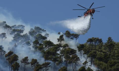 Φωτιά στην Κάρυστο: Οριοθετημένο το μέτωπο – Συνεχίζεται η μάχη των πυροσβεστών