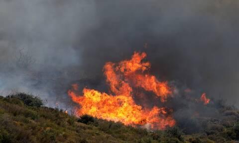 φωτιά πυρκαγιά