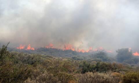 Πολύ υψηλός κίνδυνος πυρκαγιάς για σήμερα, Τετάρτη 25 Αυγούστου - Ποιες περιοχές αφορά